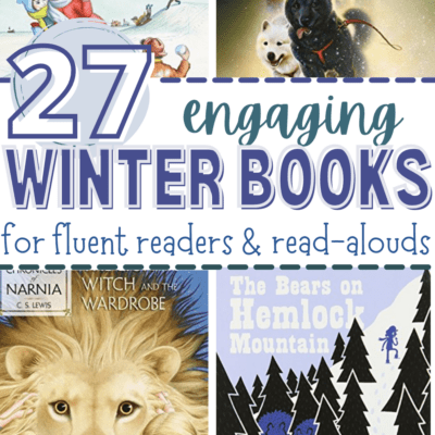 Winter Chapter Books